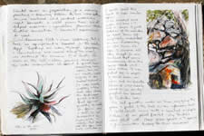 Creative Journal - 1